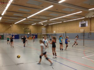 HSV_Volleyball 03